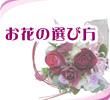 お花の選び方